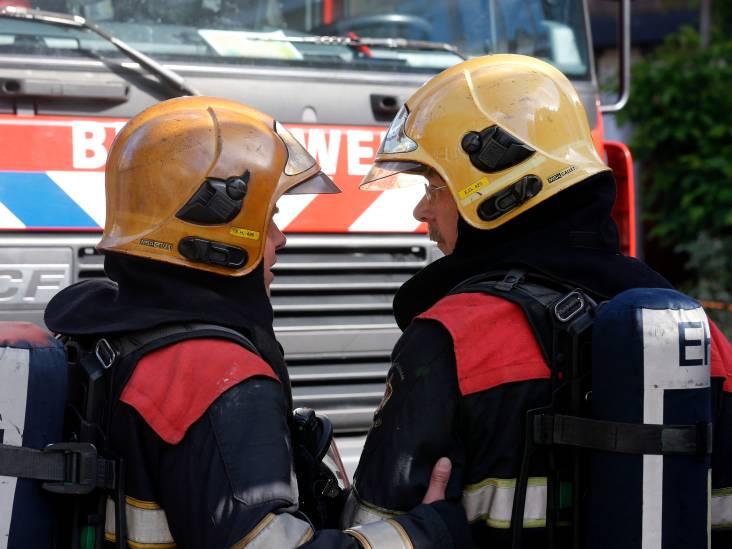 Brand op terrein van kippenstal in Hoogeloon