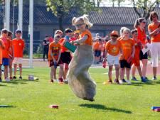 Sporten in het oranje voor de koning