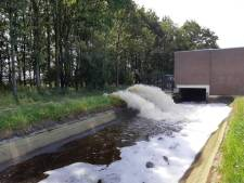 Gevaar voor vissen dreigt nadat waterpeil Leijgraaf zakt door defect aan gemaal: 'Een hopeloos moment'