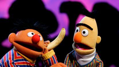 """Sesamstraat ontkent homorelatie Bert en Ernie: """"Het zijn gewoon vrienden"""""""
