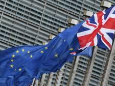 Mkb'er laat brexit-subsidie links liggen