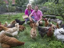 Eieren niet aan te slepen, zegt Nijverdalse hobbyboer