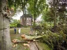 Onweer zorgt voor ravage in Engels' Tuin in Ootmarsum