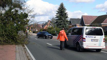 STORMWEER: politie ontving vijftigtal meldingen van schade