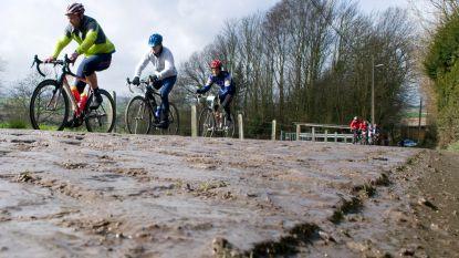 Daar is de koers! Koppel je fietstocht in de Vlaamse Ardennen aan een weekendje weg: 8 vakantieverblijven met een wielerhart