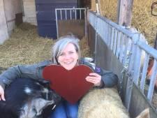 Met deze knuffelvarkens kun je heerlijk kroelen op Valentijnsdag