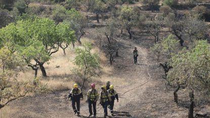 Bosbranden teisteren Spanje en Zuid-Frankrijk