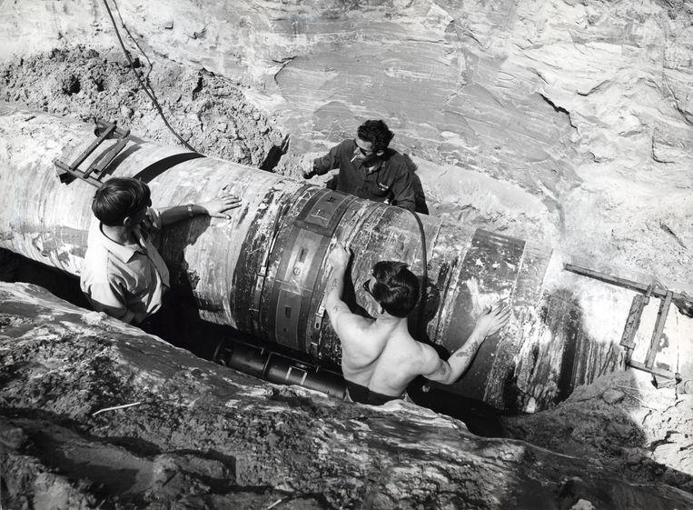 Aanleg van een pijpleiding voor aardgas in 1964. Beeld ANP/HH