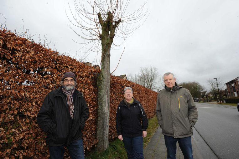 Paul Luypaert, Marie-Jeanne Thaelemans en Jos Vermeiren bij een van hun geliefde bomen.