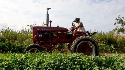 """VN waarschuwt voor globale voedselcrisis door klimaatverandering: """"Eetgewoonten aanpassen"""""""