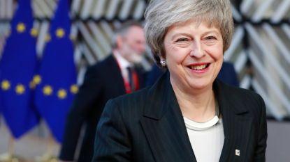 Europese leiders benadrukken dat Ierse 'backstop' tijdelijk karakter heeft