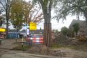 De bomen op het plein worden ontzien.