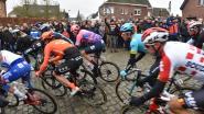 Blij weerzien met de renners: Omloop lokt wielerfans naar de hellingen en kasseistroken in de Vlaamse Ardennen