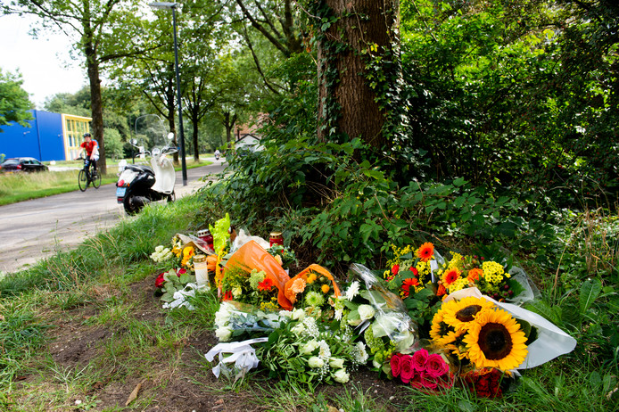 In de berm van de Kayersdijk en de kruising met de Haringvliet zijn bloemen neergelegd op de plek waar de Apeldoorner werd aangereden.
