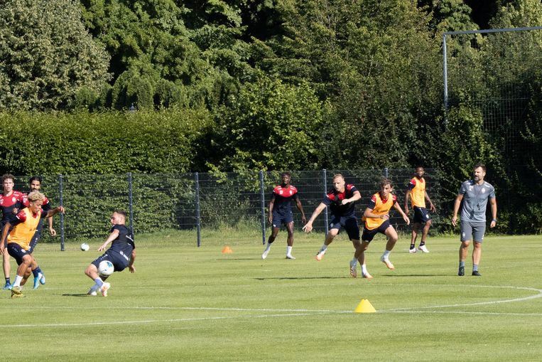 Trainingsstage in Antwerp