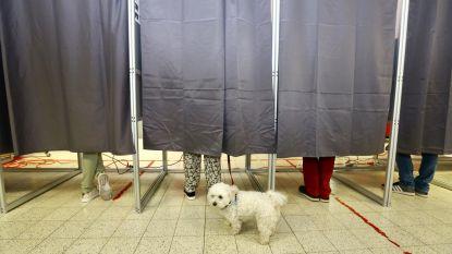 Verkiezingen 2019: Hoe scoorden de Roeselaarse kandidaten?