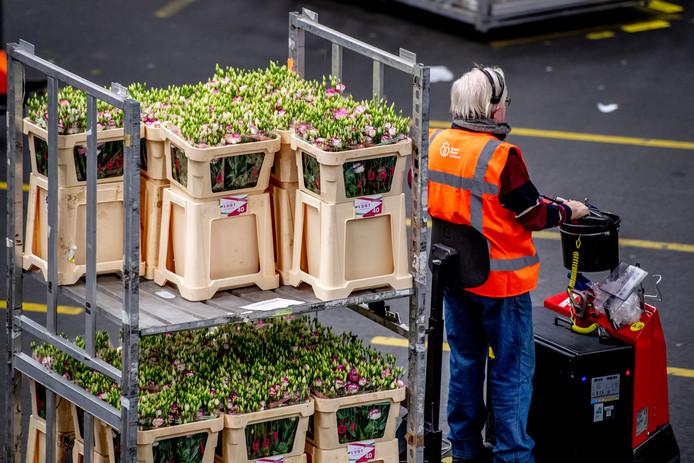 Bloemen en planten vormen met 10 procent van de exportwaarde de grootste categorie in de uitvoer van landbouwproducten.