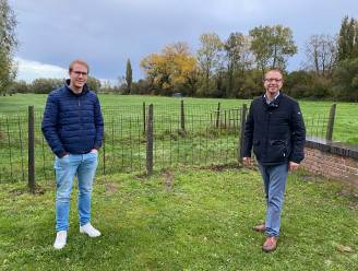 """Oppositiepartij CD&V keurt aankoop gronden Westouter goed: """"We willen echter geen blanco cheque tekenen"""""""