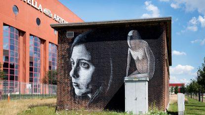 FOTOREPO: Na Londen en Berlijn is nu ook Leuven 'street art city'