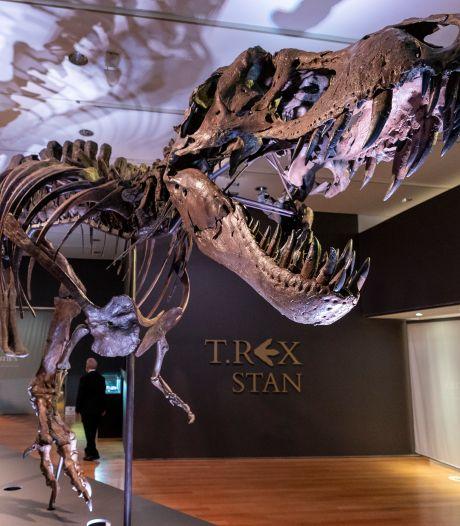 T-Rex à vendre