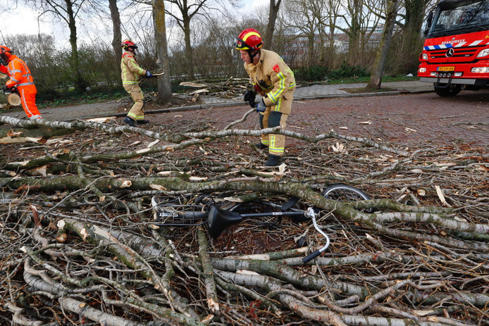 Fietser onder boom bedolven in Eindhoven.