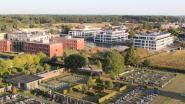 Haag rond begraafplaats Aalter-centrum wordt vervangen, maar graven blijven bereikbaar