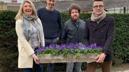 Record van 40.000 bloemen fleuren Brugse buurten op