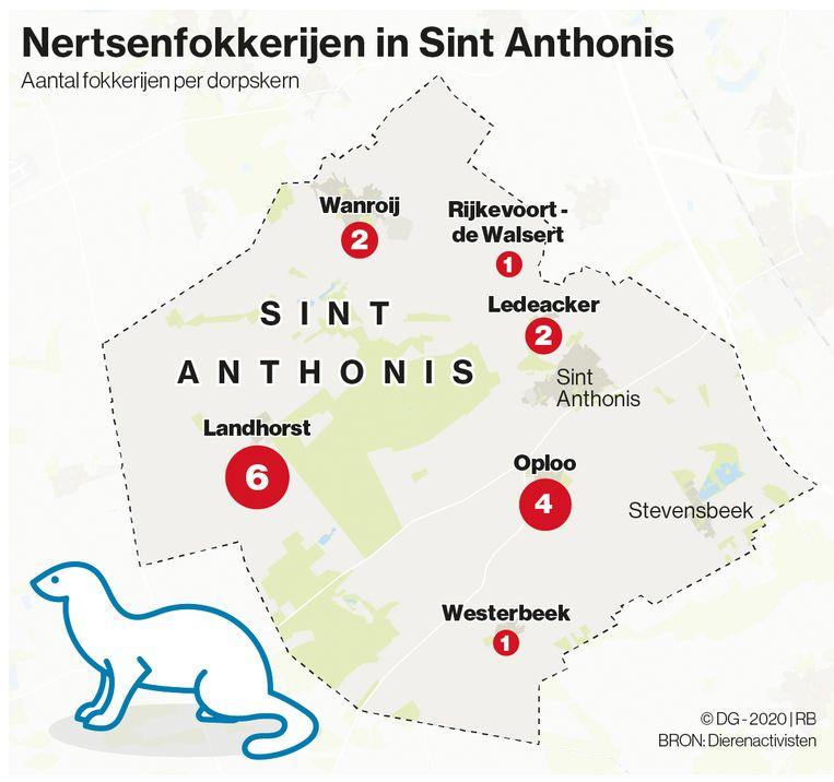 Nertsenfokkerijen in Sint Anthonis op basis van een lijst die circuleert onder dierenactivisten. Beeld DG