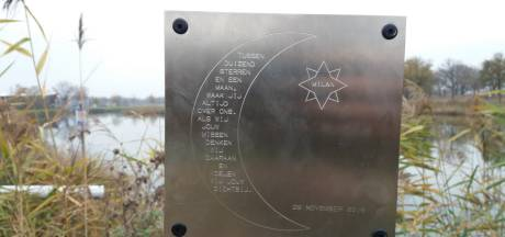 Vrienden herdenken omgekomen Milan en Dean: Monumentje op plek waar Somerenaren om het leven kwamen