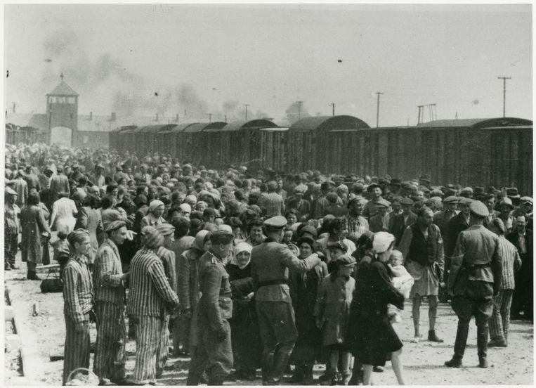 Auschwitz-Birkenau, zomer 1944.  Door in het Kanada-Kommando te werken, konden Jaap van Gelder en Jaap de Hond (uiterst links, in gestreepte kampkleding) overleven. Beeld United States Holocaust Memorial Museum/Yad Vashem