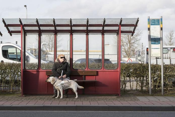 De visueel beperkte mevrouw Bennink maakt veel gebruik van de bus, die echter de halte rotonde Pollaan/Industrieweg vaak overslaat. Op de foto wacht zij met haar hulphond Izzy bij de bushalte.