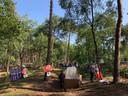 In het sprookjesbos is een paddenstoelenkamp gecreëerd.