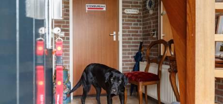 Stembureau met hond: het kan allemaal in Marle