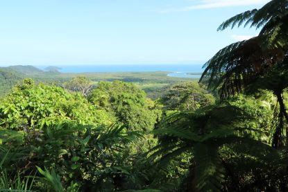 Dit is Cape Tribulation: de enige plek ter wereld waar het rif en het regenwoud elkaar ontmoeten