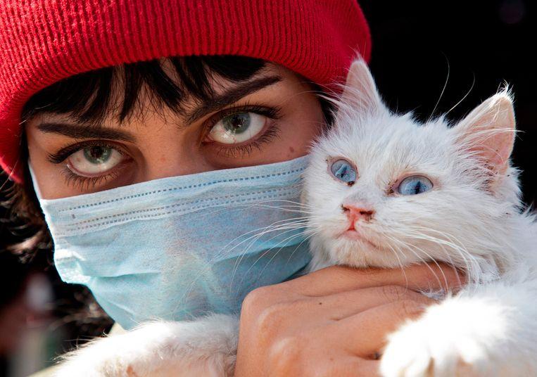 Een Iraakse vrouw poseert met haar kat (die het coronavirus ook op kan lopen). Beeld AFP