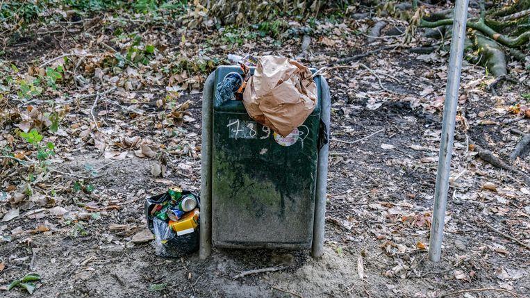 Ook opvallend: vuilnisbakken puilen uit in het park.