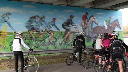 Graffiti siert pijler van Bierstalbrug