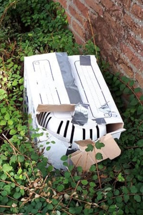 Kat gedumpt in dichtgetapete doos in Aalsmeer