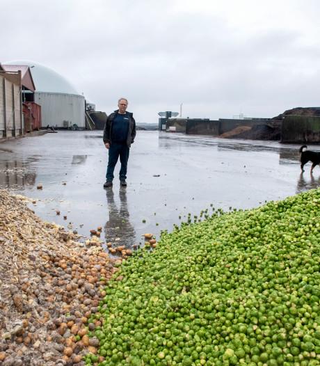 Liander verandert gasleidingnet om biogas van boeren in Zeewolde toe te laten