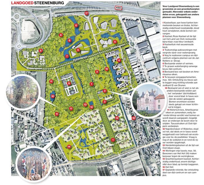 Graphic Steenenburg