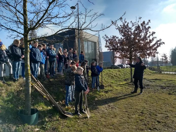 Boomfeestdag bij de Turnhoutsebaan-Rillaersebaan in Goirle. Rechts Harry van de Ven.