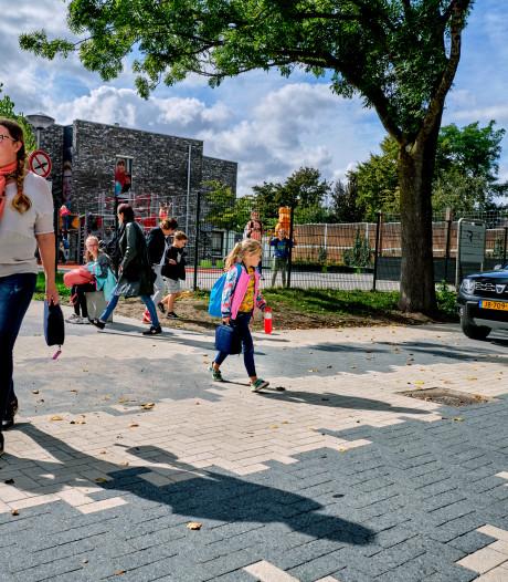 Hommeles in Heerjansdam om de zebrastraat