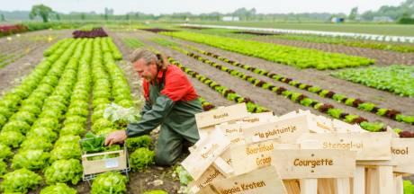Peet en Elza boeren veganistisch, zonder dierlijke mest