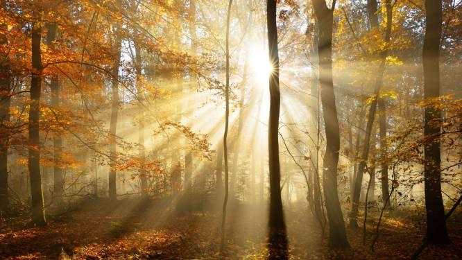 Roeselare krijgt Vlaamse subsidie voor aanleg groene gordel