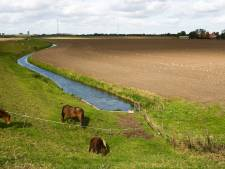 Landbouw ageert tegen onteigeningsplannen provincie: 'Middel wordt erger dan de kwaal'