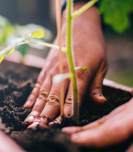 Un nouveau rendez-vous autour du jardinage à Huy