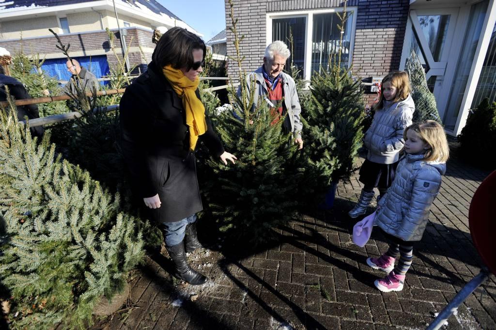 De heer Van Rooij verkocht in de Mechelenstraat 300 kerstbomen Joris Buijs/PVE.