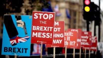 """Regeringsbronnen: """"Stemming dag voor brexitdeadline nog altijd mogelijk"""""""