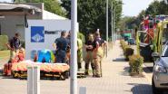 Zevenjarig meisje raakt gewond bij ongeval in Industriepark-Noord