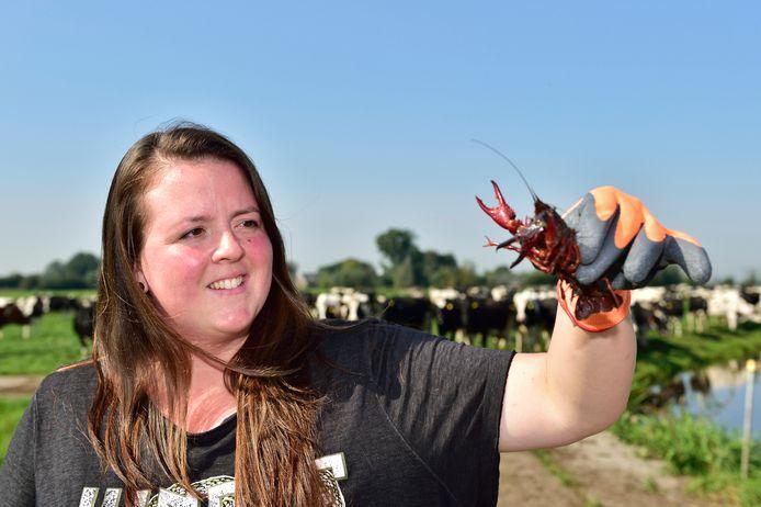 Tanja Both van zorgboerderij Both BoerenZorg met een Amerikaanse rivierkreeft. Die vormt een echte plaag in de Krimpenerwaard.